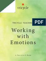 Emotions eBook