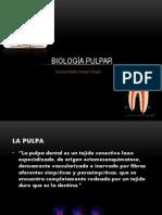 Biología pulpar