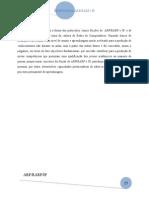 Protocolos ARP/RARP e IP