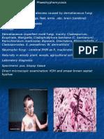 Rhinosporidiosis (1)