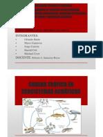 Sistemas acuaticos