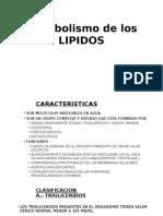 LIPIDOS -
