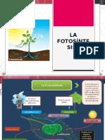 La Fotosíntesis
