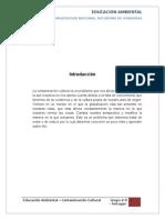 Contaminacion Cultural Informe.docx