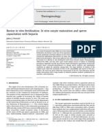 Bovine in Vitro Fertilization in Vitro Oocyte Maturation and Sperm