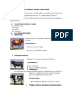 Producción de Ganado Bovino Para Carne