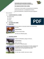 PRODUCCIÓN DE GANADO BOVINO PARA CARNE.pdf