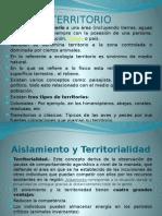 TERRITORIO Clase 8 PowerPoint (1) (3)