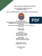 Proyecto de Investigacion Fitopatologia 2010