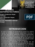 ACEROS AUTOPROTECTORES