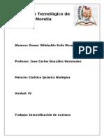 Inmovilizacion de ENZIMAS (1)