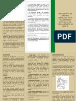 Tríptico_Prevencion Fatiga Visual.pdf