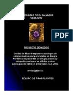 Presentación Células Madres. ISSS-2006