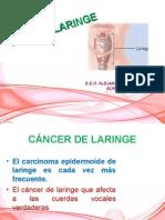 Cancer Laringe