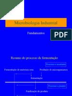 MicIndustrial Lic2006 2parte[1]
