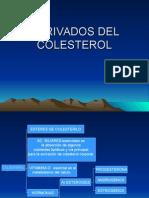 48549643-Derivados-Del-Colesterol.ppt