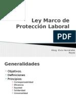 Ley Marco de Protección Social