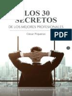 Los 30 Secretos de Los Mejores Profesionales 1
