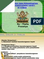 Modul Siklus 2 Thalia