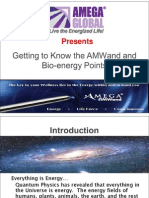 Amwand Presentation Usa 011510