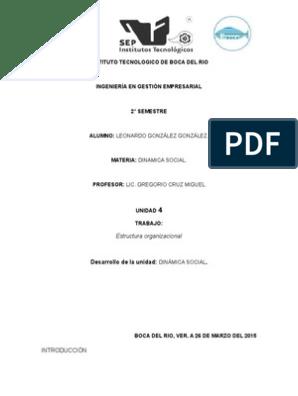 Unidad 4estructura Organizacional Dinamica Social Gobierno
