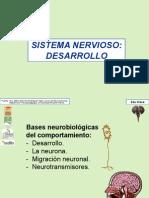 Cerebro Exposicion 2