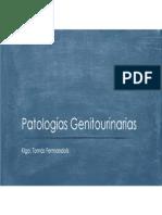 9- Patologías Genitourinarias
