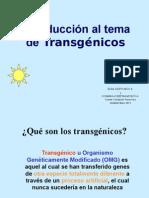 Transgenicos No en Venezuela