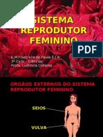 SISTEMA REPRODUTOR FEMININO -2009