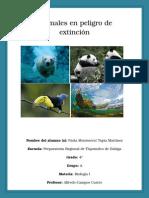 Animales en Peligro de Extincion Biologia I