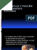 Desarrollo y Funcion de Los Anexos Ovulares