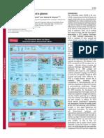Journal - The Extracelllular Matrix at a Glance