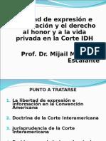 CIDH.libertad.de.Expresión