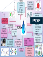 mapa  agua