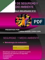 Trabajo n1_larisa Cussi