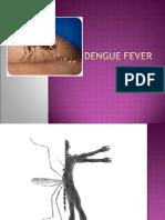 Dengue Fever Im Clerkship
