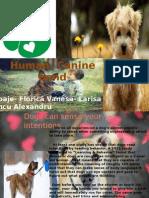 Human- Canine Bond