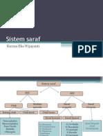 Bahan Kuliah Sistem_saraf