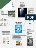 El Agua, Importancia y Contaminacion