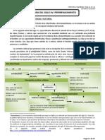 LITERATURA 1º Bachillerato. Temas 14, 15 y