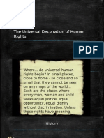 The UDHR