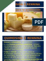 Enzima Rennina o Quimosina