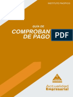 lv2013_guia_comprobantes_pago.pdf