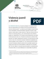 Fs Youth Es Violencia y Alchol Oms