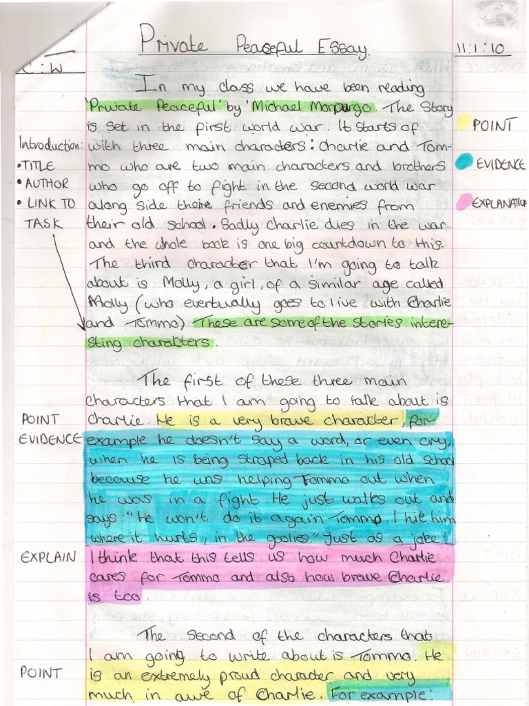 private peaceful essay private peaceful university education and private peaceful essay