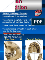 Dental Anatomy Intro (1)