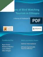 Ethiopia Birdwatching Survey