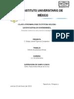 Instituto Universitario de México