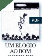 Administração_Um elogio ao bom rebelde