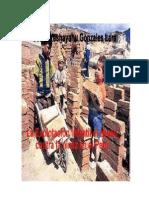 La Explotación infantil y el abuso contra la niñez en el Perú y la necesidad de la Reforma del Estado Peruano